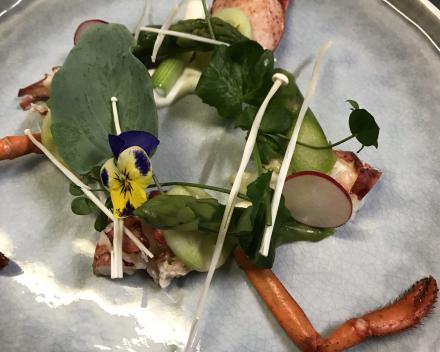Salade van Canadese kreeft